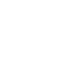 dragon_100