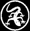 lizard_100
